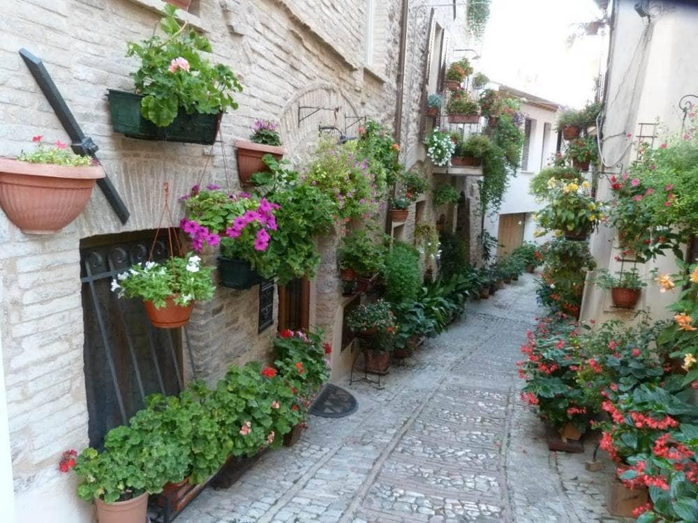 Due meravigliose città: Assisi e Spoleto