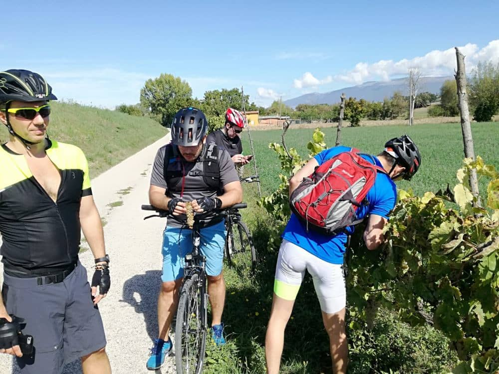 bike path Assisi-Spoleto