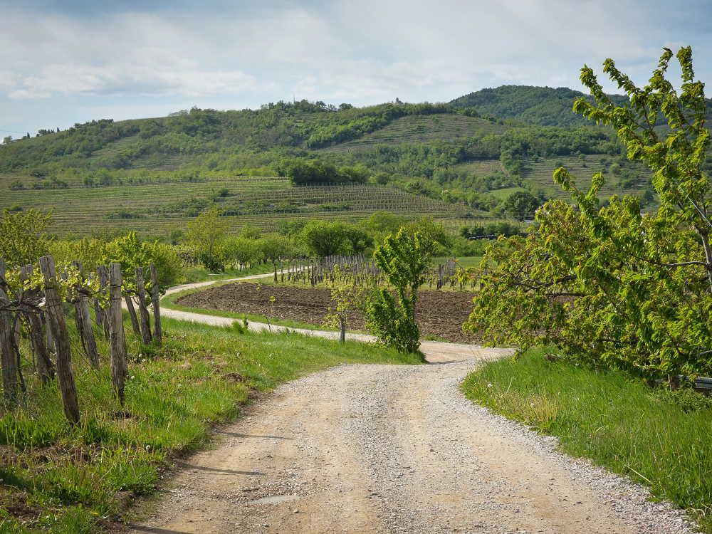 de zonneroute in Slovenie