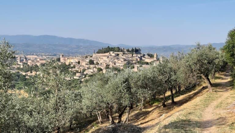 View of Spello